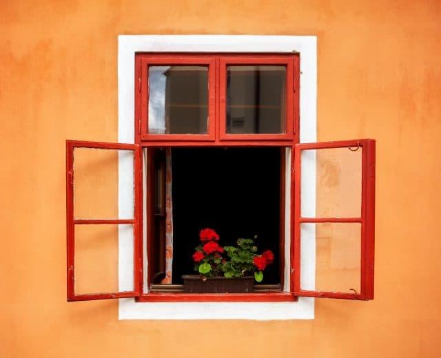 Fenêtre ouverte avec des fleurs