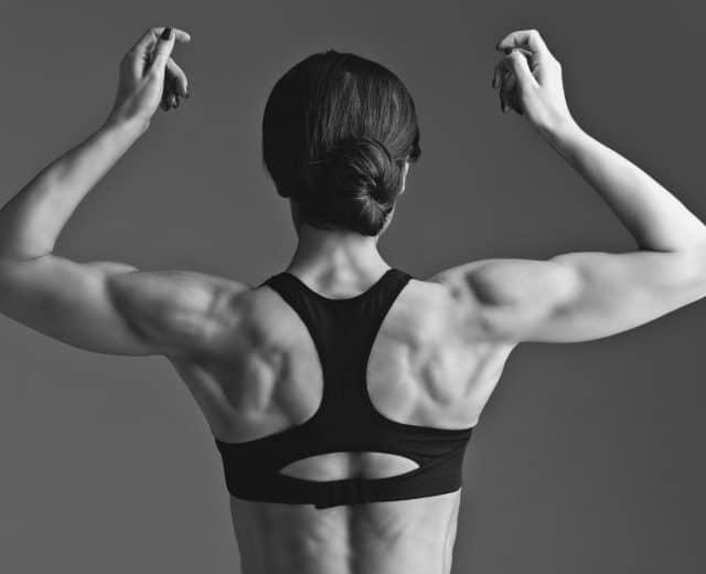 Définition musculaire