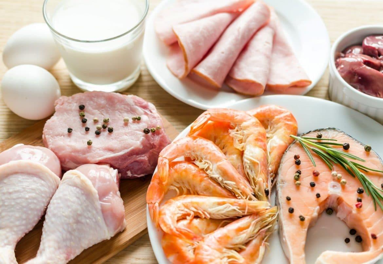 Plats riches en protéines