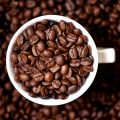 garins de café riches en caféine