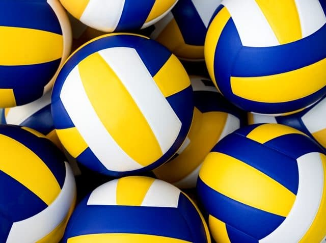 Ballons de volleyball