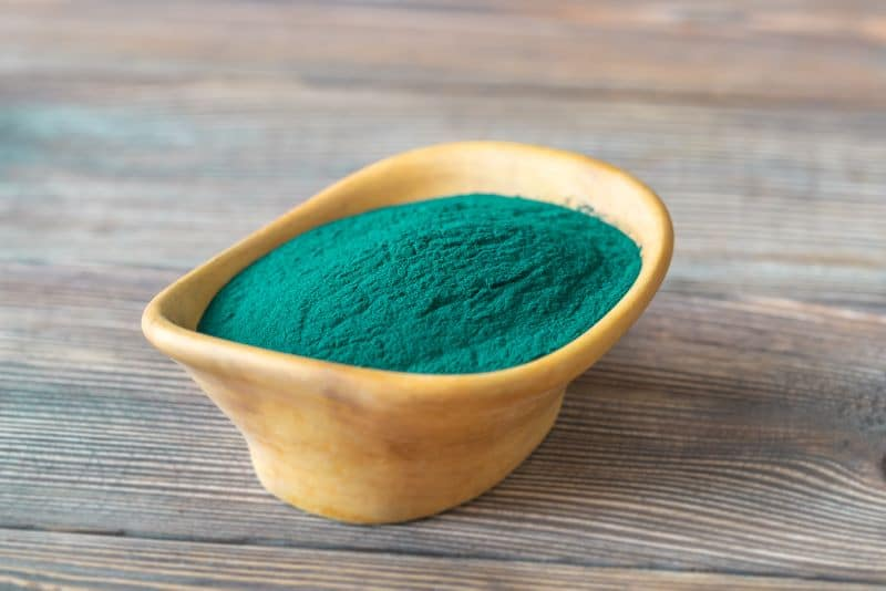 Poudre de spiruline bleu vert